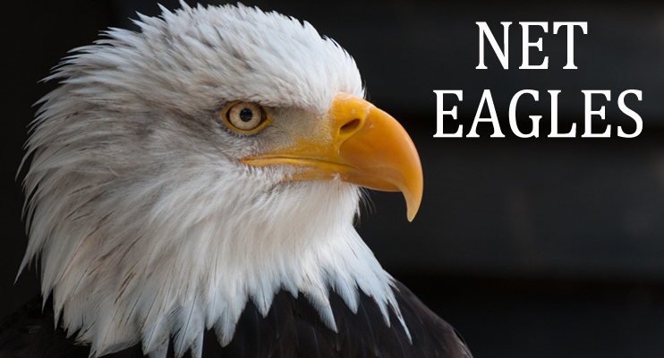 Net Eagles Web Design & Development
